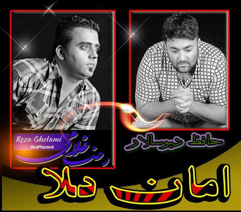 Reza-Gholami_Fit_Hafez-Divsalar_09118034558