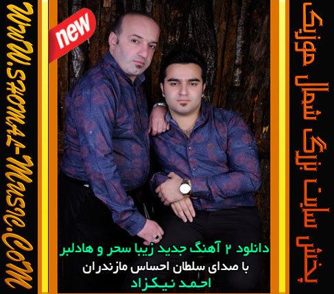 Ahmad-Nikzad_Ha-Delbar