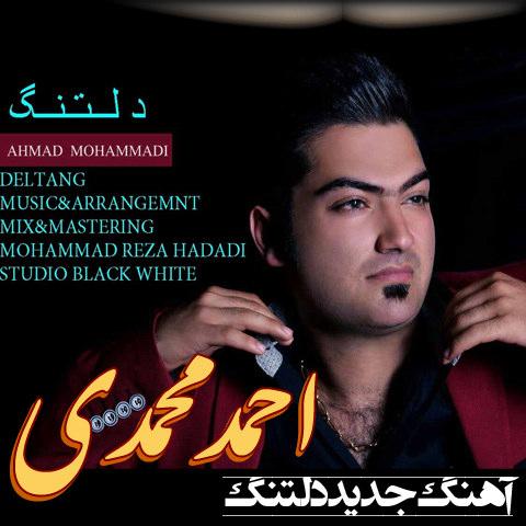 Ahmad Mohammadi- Deltang