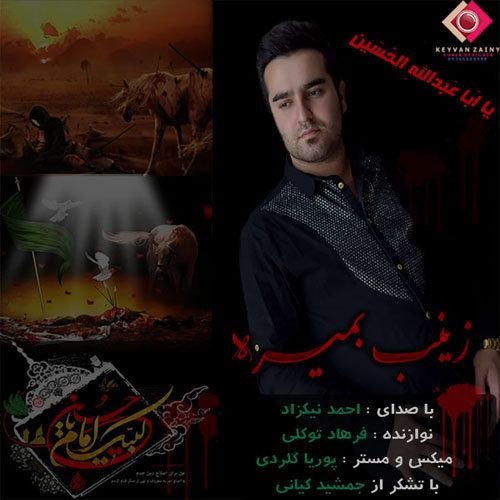 دانلود مداحی مازندرانی احمد نیکزاد با بنام زینب بمیره