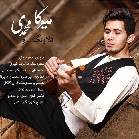 دانلود آهنگ مازندرانی طلا ونگ بزو با صدای میرکا محمدی