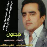 آهنگ مجنون با صدای وحید حیدری