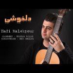 آهنگ دلخوشی با صدای هادی ملک پور