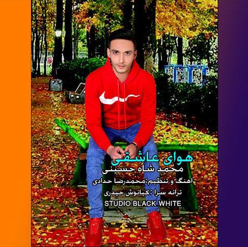 آهنگ مازندرانی هوای عاشقی از محمد شاه حسینی
