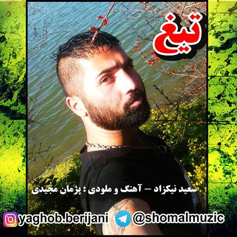 آهنگ جدید مازندرانی تیغ با صدای سعید نیکزاد