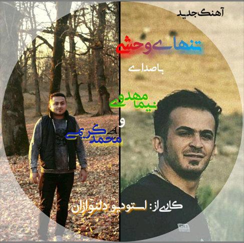 تنهای وحشی با صدای محمد کریمی و نیما مهدوی