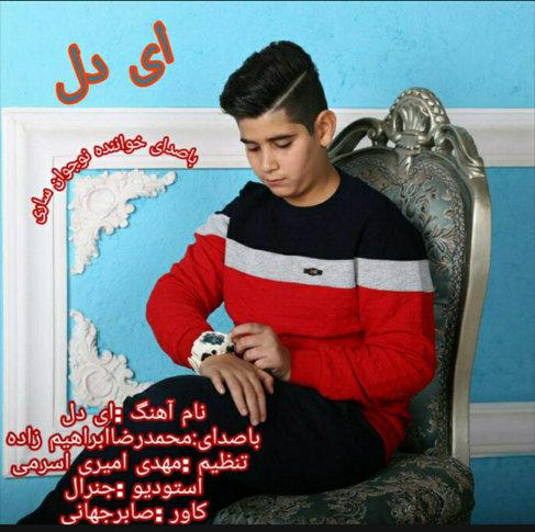 آهنگ ای دل با صدای محمدرضا ابراهیم زاده