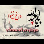 موزیک مداحی داغ نینوا از مجتبی احمدی