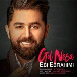 آهنگ گل نسا با صدای ابی ابراهیمی