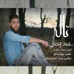 آهنگ جدید ناله با صدای محمد بیضایی