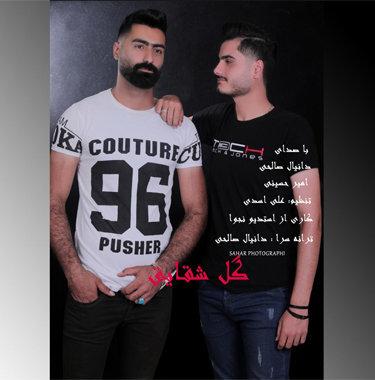 آهنگ گل شقایق از دانیال صالحی و امیر حسینی