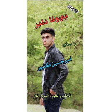 آهنگ بی وفا دلبر باصدای امیرحسین گلپور