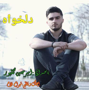 آهنگ دلخواه باصدای امیرحسین گلپور