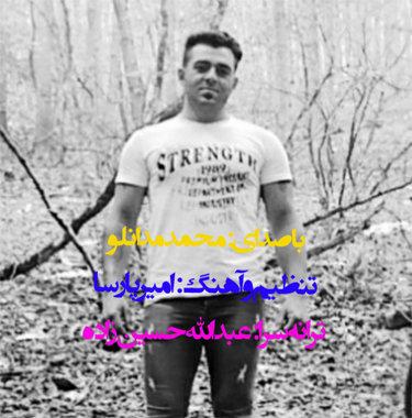 آهنگ جدید دتر با صدای محمد مدانلو