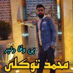 آهنگ بی وفا دلبر با صدای محمد توکلی
