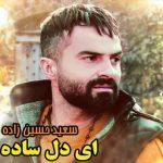آهنگ ای دل ساده با صدای سعید حسین زاده