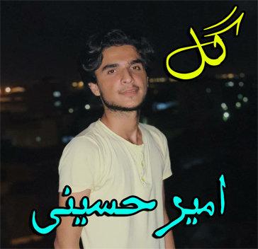 آهنگ فارسی گل با صدای امیر حسینی