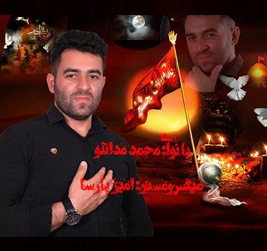 آهنگ مداحی دشت کربلا با نوای محمد مدانلو