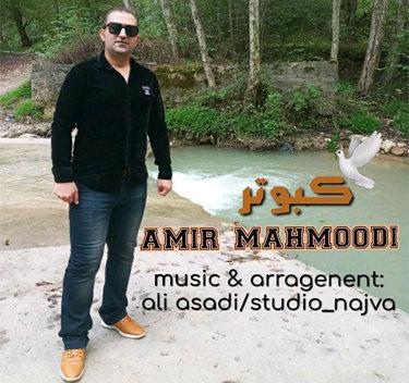 آهنگ کبوتر با صدای امیر محمودی